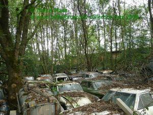 Autofriedhof Gürbetal 2009 031h