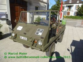 Wald Rollt 2015
