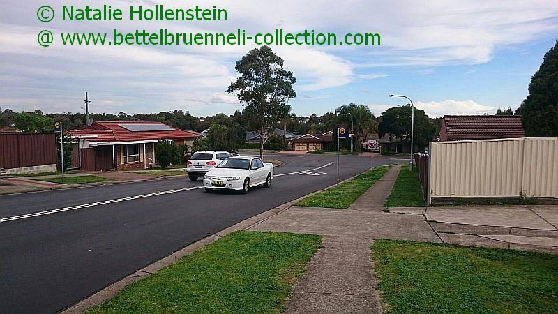 Holden Crewman VZ 001h